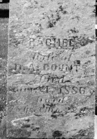 COUNTS, RACHEL - Madison County, Ohio | RACHEL COUNTS - Ohio Gravestone Photos