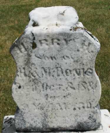 DAVIS, HARRY H. - Madison County, Ohio | HARRY H. DAVIS - Ohio Gravestone Photos