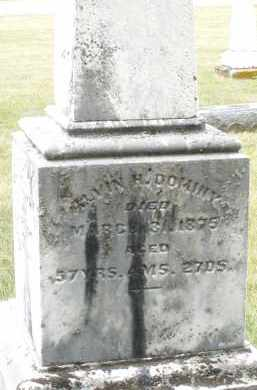 DOMINY, ALVIN H. - Madison County, Ohio | ALVIN H. DOMINY - Ohio Gravestone Photos