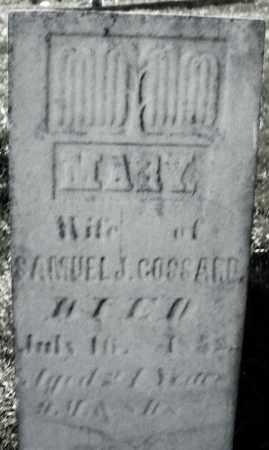 GOSSARD, MARY - Madison County, Ohio | MARY GOSSARD - Ohio Gravestone Photos