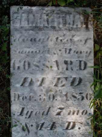 GOSSARD, SAMANTHA - Madison County, Ohio | SAMANTHA GOSSARD - Ohio Gravestone Photos