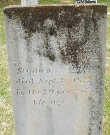 GUY, STEPHAN - Madison County, Ohio | STEPHAN GUY - Ohio Gravestone Photos