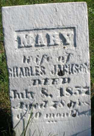 JACKSON, MARY - Madison County, Ohio | MARY JACKSON - Ohio Gravestone Photos