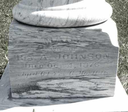 JOHNSON, MARY - Madison County, Ohio | MARY JOHNSON - Ohio Gravestone Photos