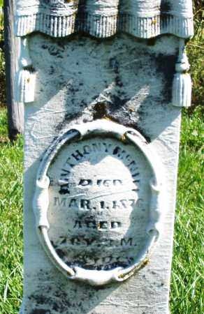 MCNIEL, ANTHONY - Madison County, Ohio | ANTHONY MCNIEL - Ohio Gravestone Photos