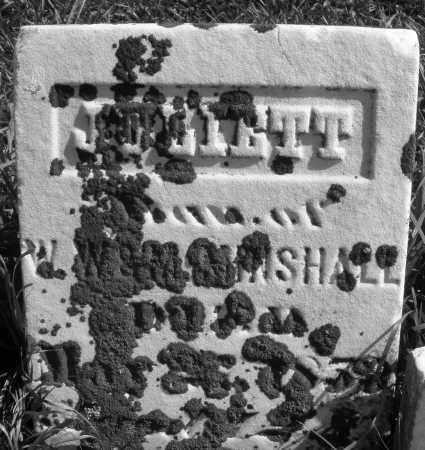 MINSHALL, JOLIETT - Madison County, Ohio   JOLIETT MINSHALL - Ohio Gravestone Photos