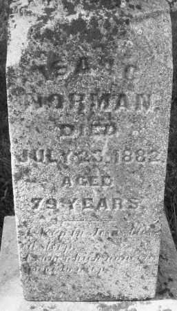 NORMAN, ISAAC - Madison County, Ohio | ISAAC NORMAN - Ohio Gravestone Photos