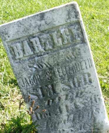SELSOR, BARTLEY - Madison County, Ohio | BARTLEY SELSOR - Ohio Gravestone Photos