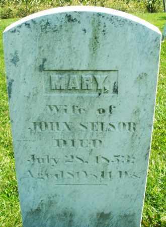 SELSOR, MARY - Madison County, Ohio | MARY SELSOR - Ohio Gravestone Photos