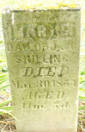 SHILLING, MARY - Madison County, Ohio | MARY SHILLING - Ohio Gravestone Photos