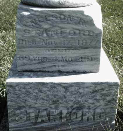 STANFORD, NELSON R. - Madison County, Ohio | NELSON R. STANFORD - Ohio Gravestone Photos