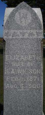 WILSON, ELIZABETH - Madison County, Ohio | ELIZABETH WILSON - Ohio Gravestone Photos
