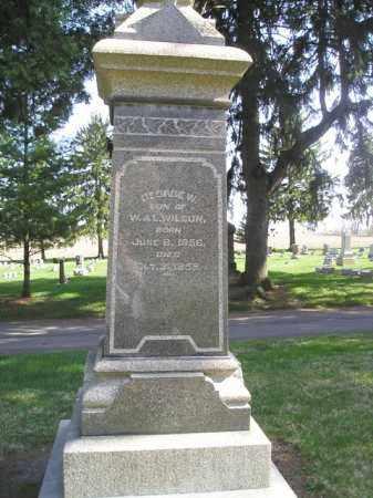 WILSON, GEORGE WASHINGTON - Madison County, Ohio   GEORGE WASHINGTON WILSON - Ohio Gravestone Photos