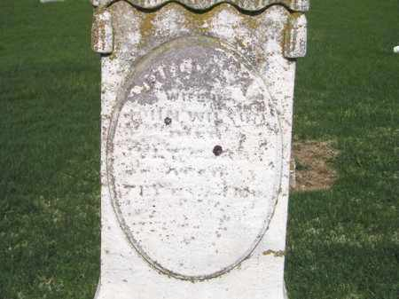 PRUGH WILSON, JULIA ANN - Madison County, Ohio   JULIA ANN PRUGH WILSON - Ohio Gravestone Photos