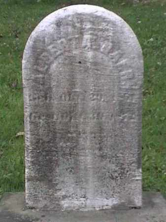 ?, ALBERT A. - Mahoning County, Ohio | ALBERT A. ? - Ohio Gravestone Photos