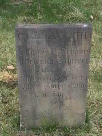 ?, CASLENA CATH - Mahoning County, Ohio | CASLENA CATH ? - Ohio Gravestone Photos