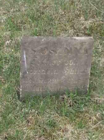 ?, SUSANNA - Mahoning County, Ohio   SUSANNA ? - Ohio Gravestone Photos