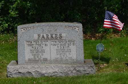 FARKES, SAMUEL - Mahoning County, Ohio | SAMUEL FARKES - Ohio Gravestone Photos