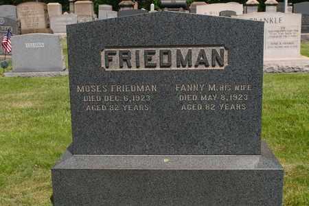 FRIEDMAN, FANNY - Mahoning County, Ohio   FANNY FRIEDMAN - Ohio Gravestone Photos