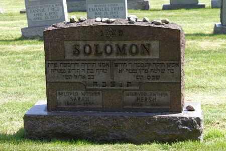 SOLOMON, SARAH - Mahoning County, Ohio | SARAH SOLOMON - Ohio Gravestone Photos