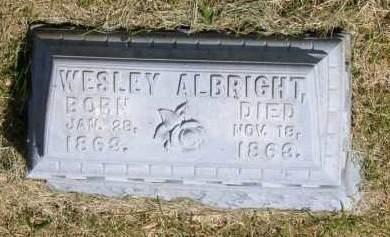 ALBRIGHT, WESLEY - Marion County, Ohio | WESLEY ALBRIGHT - Ohio Gravestone Photos