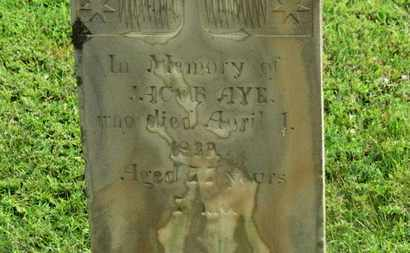AYE, JACOB - Marion County, Ohio | JACOB AYE - Ohio Gravestone Photos