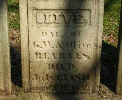 BEARNES, OLIVE - Marion County, Ohio | OLIVE BEARNES - Ohio Gravestone Photos