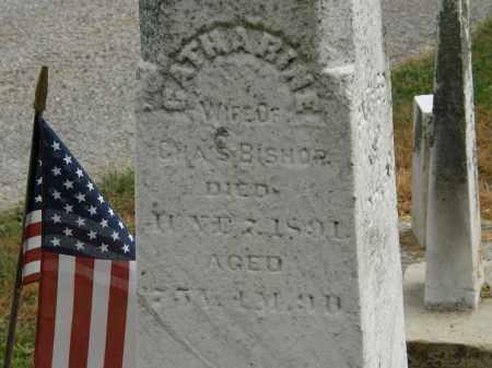 BISHOP, CATHARINE - Marion County, Ohio   CATHARINE BISHOP - Ohio Gravestone Photos