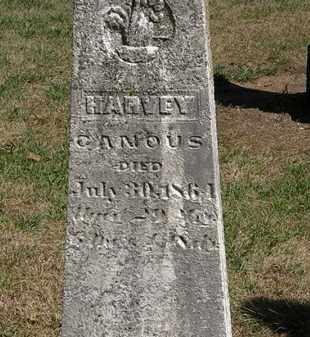 CANOUS, HARVEY - Marion County, Ohio | HARVEY CANOUS - Ohio Gravestone Photos