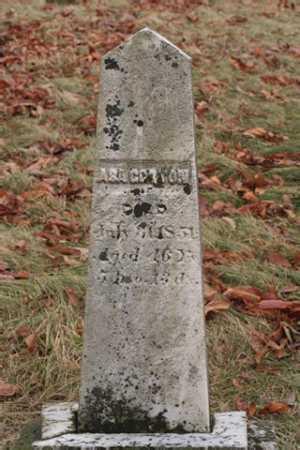 COTTON, ASA - Marion County, Ohio | ASA COTTON - Ohio Gravestone Photos