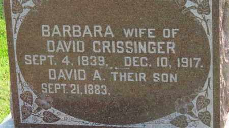 CRISSINGER, DAVID - Marion County, Ohio | DAVID CRISSINGER - Ohio Gravestone Photos