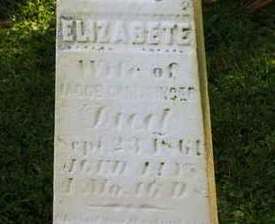 CRISSINGER, ELIZABETE - Marion County, Ohio   ELIZABETE CRISSINGER - Ohio Gravestone Photos