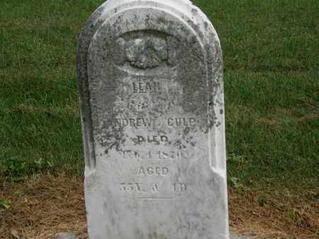 CULP, ANDREW - Marion County, Ohio   ANDREW CULP - Ohio Gravestone Photos
