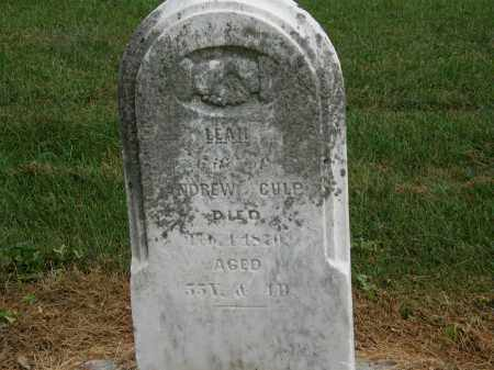 CULP, LEAH - Marion County, Ohio | LEAH CULP - Ohio Gravestone Photos