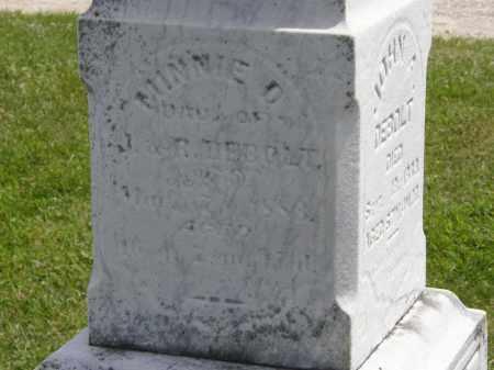 DE BOLT, J. - Marion County, Ohio | J. DE BOLT - Ohio Gravestone Photos