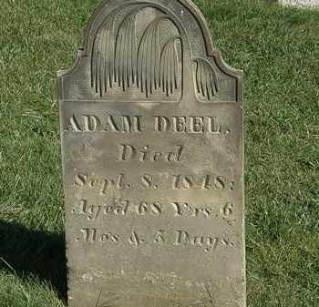 DEEL, ADAM - Marion County, Ohio | ADAM DEEL - Ohio Gravestone Photos