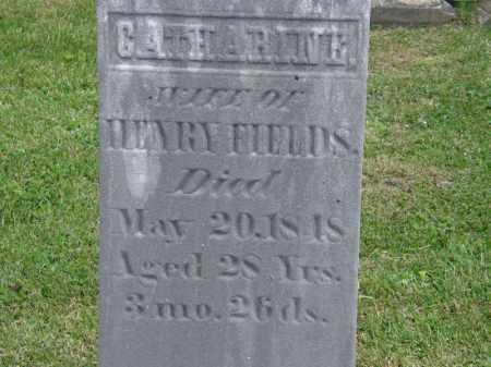 FIELDS, HENRY - Marion County, Ohio | HENRY FIELDS - Ohio Gravestone Photos