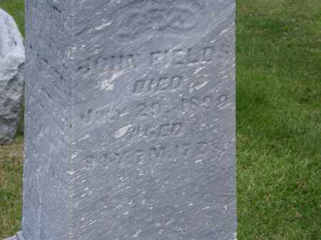 FIELDS, JOHN - Marion County, Ohio | JOHN FIELDS - Ohio Gravestone Photos