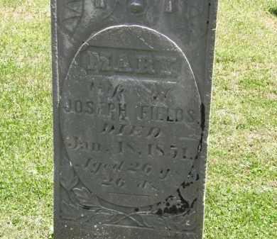 FIELDS, MARY - Marion County, Ohio | MARY FIELDS - Ohio Gravestone Photos