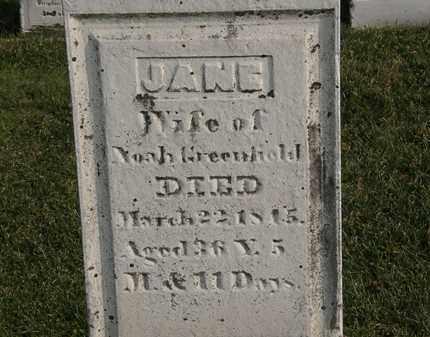 GREENFIELD, NOAH - Marion County, Ohio | NOAH GREENFIELD - Ohio Gravestone Photos
