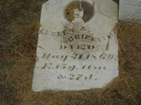 GRIFFITH, LESLEY A. - Marion County, Ohio | LESLEY A. GRIFFITH - Ohio Gravestone Photos