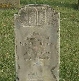 JANES, ISABELLA - Marion County, Ohio | ISABELLA JANES - Ohio Gravestone Photos