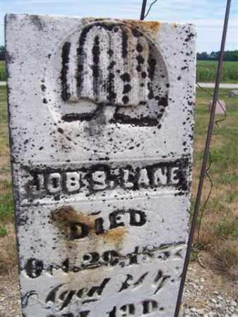 LANE, JOBE S. - Marion County, Ohio   JOBE S. LANE - Ohio Gravestone Photos