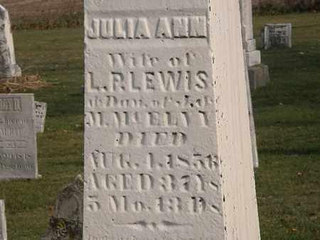 LEWIS, L. P. - Marion County, Ohio | L. P. LEWIS - Ohio Gravestone Photos