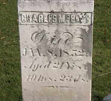 MCELVY, CHARLES - Marion County, Ohio   CHARLES MCELVY - Ohio Gravestone Photos