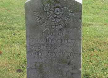 MCKINLEY, MARIA EBAZENA - Marion County, Ohio | MARIA EBAZENA MCKINLEY - Ohio Gravestone Photos