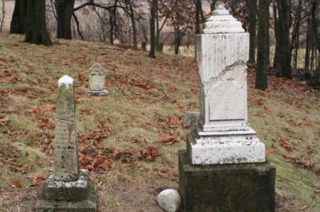 MCWHERTER, MARGARET - Marion County, Ohio | MARGARET MCWHERTER - Ohio Gravestone Photos