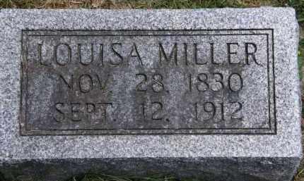 MILLER, LOUISA - Marion County, Ohio | LOUISA MILLER - Ohio Gravestone Photos