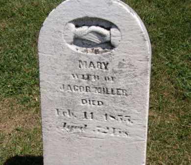 MILLER, JACOB - Marion County, Ohio | JACOB MILLER - Ohio Gravestone Photos