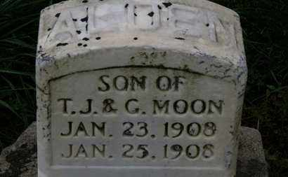 MOON, ALDEN - Marion County, Ohio   ALDEN MOON - Ohio Gravestone Photos